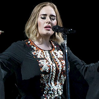 Adele stops the show