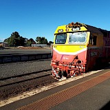 Footy trains