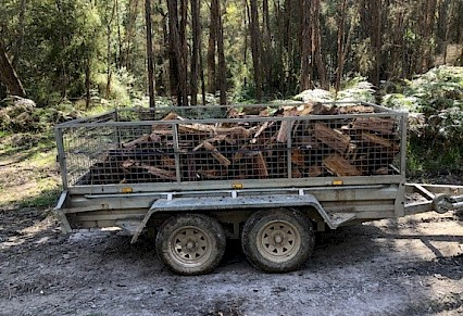 Illegal Firewood Seized